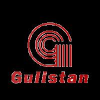 Gulistan Spinning Mills Limited - gusm Share Price